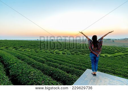 Lifestyle Traveler Women Happy Feeling Good Relax And Freedom Facing On The Natural Tea Farm In The