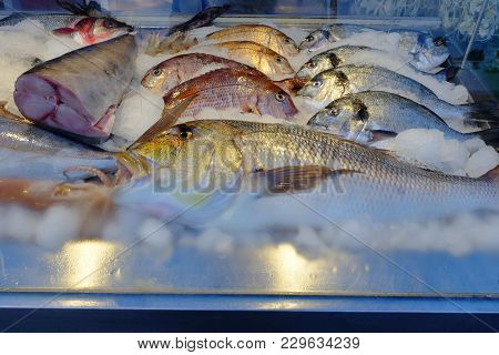 Closeup View Of Fresh And Raw Fishes On Ice For Sale At Seafood Market. A Full Frame Background Of F