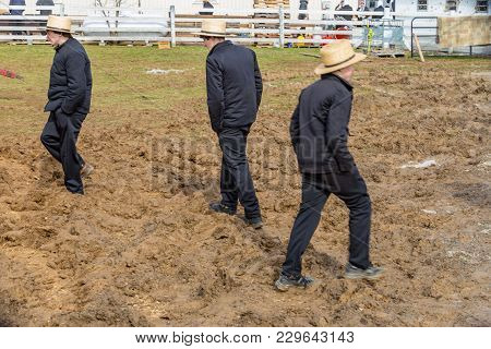 Muddy Fields With Amish