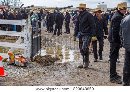 Mud At Mud Sale