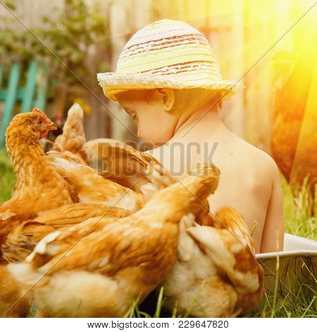 Cute Little Child Girl Bathing Outdoors And Having Fun With Chickens. Summer Holidays And Child Deve