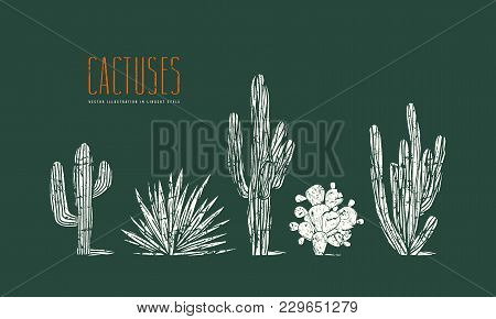 Stock Vector Set Of Hand Drawn Cactus. Illustration In Linocut Style. Different Forms Of Plants With