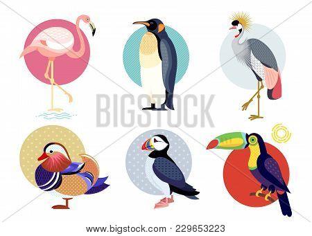 Birds Puffin, Mandarin Duck, Flamingos, Toucan, Penguin, Bird Secretary Isolated On White Background