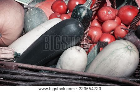 A Variety Of Vegetables: Tomatoes, Potatoes, Pumpkins, Squash, Corn, Corn, Apples Presented For Sale