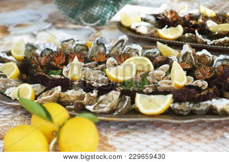 Oysters, Clams And Other Shellfish In A Tray With Pieces Of Lemon
