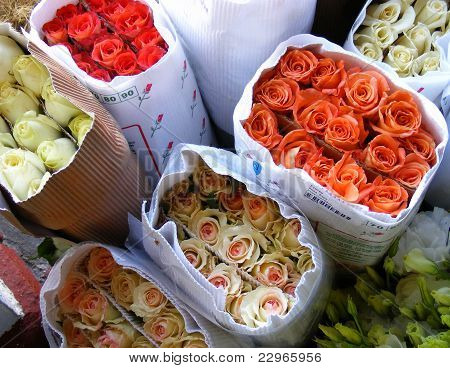 Bunches Of Roses