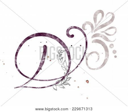 Hand Drawn Calligraphy Letter D. Watercolor Script Font. Isolated Letters Written With Ink. Handwrit