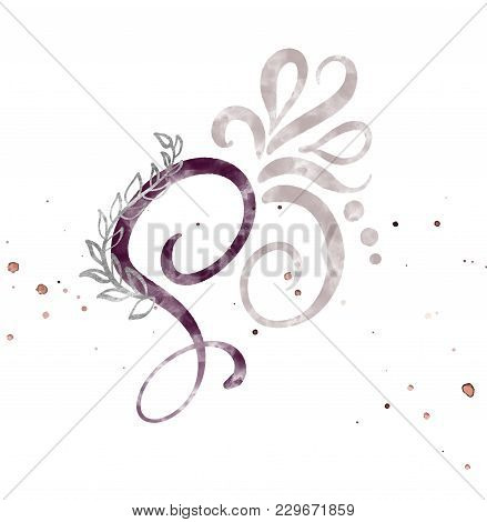Hand Drawn Calligraphy Letter S. Watercolor Script Font. Isolated Letters Written With Ink. Handwrit
