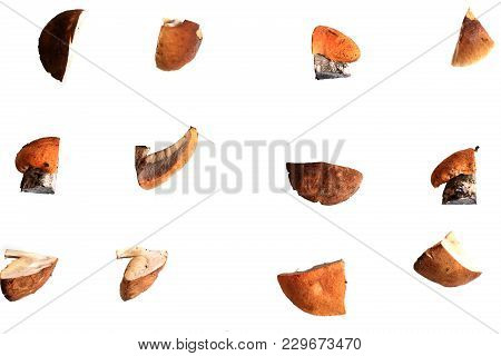Sliced Edible Mushrooms On A White Background View Of The Flat View From Above Comestible Pattern