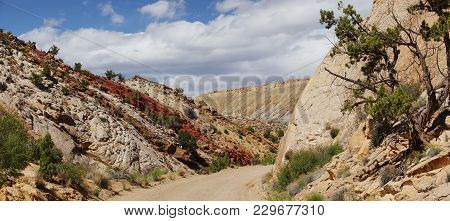 Capitol Reef, Central Utah, Usa. Panoramic View From Road To Mountains And Red Clays With Beautiful