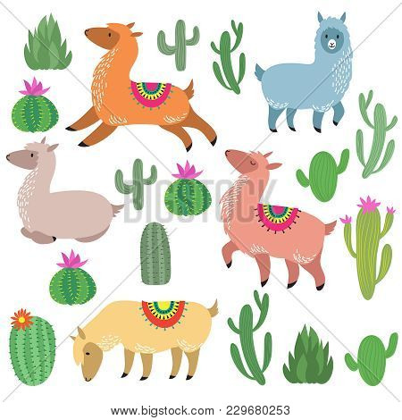 Cute Alpaca Lamas. Wildlife Vector Llama Characters. Wildlife Alpaca And Green Cactus Illustration