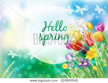 Background With Multicolor Spring Flowers Springtime Springtime