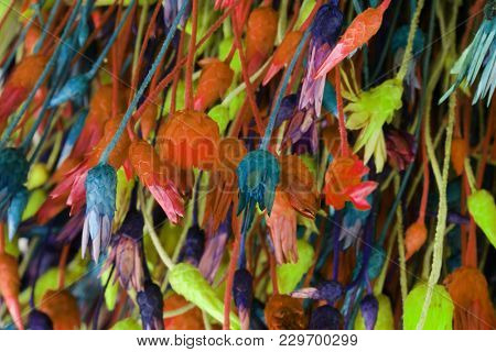 Dry flowers and grass. Abstract bright color background.