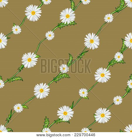 Seamless Pattern From Field Chamomiles On Stems Diagonally. Flowers, Stems And Background Are Separa