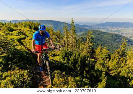 Mountain biker riding on bike in summer mountains forest landscape. Man cycling MTB flow trail track. Outdoor sport activity. poster