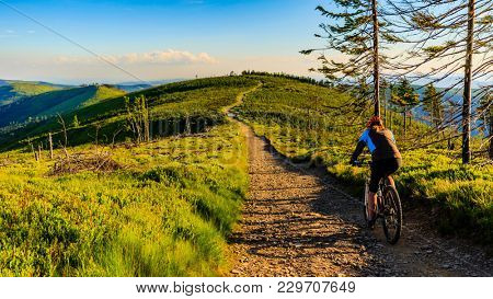 Mountain biking cycling at sunset in summer mountains forest landscape. Woman cycling MTB flow trail track. Outdoor sport activity. poster