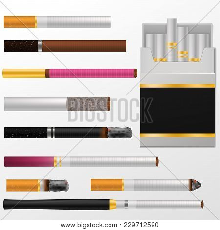 Cigarette Vector Cigar With Nicotine In Cigarette-box Or Cigar-case And Smoking Tobacco Illustration