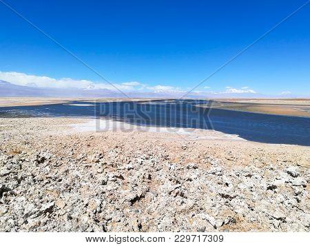 Flamingo Natural Reserve, Chile.  San Pedro De Atacama, Los Flamencos National Reserve