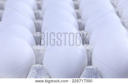 White Chicken Eggs In A Cardboard Package. Amazing White Eggs In Extreme Macro Key. Extraordinary Fo