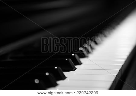 Piano Keys On Black Classical Grand Piano For Classic Music