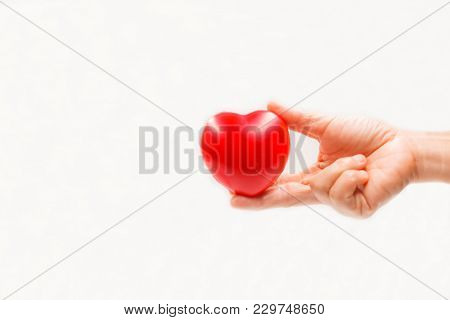 Heart Shape In The Helping Hand On White Background. Heart Illness, Disease Protection, Proactive Ch