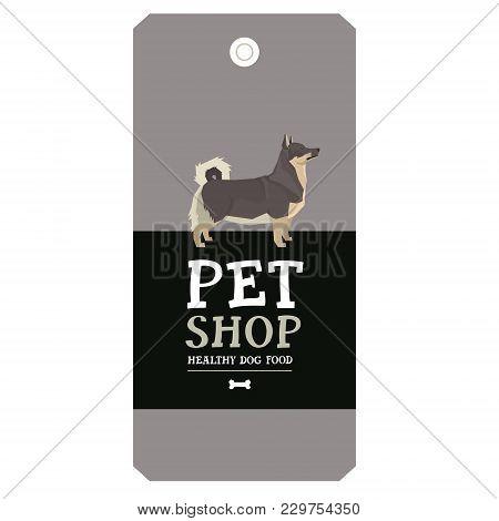 Poster Pet Shop Design Label Swedish Vallhund Geometric Style