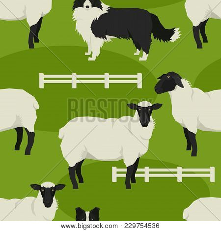 Sheep And Sheepdogs Vector Illustration Farm Animals Geometric Style Seamless Pattern Set