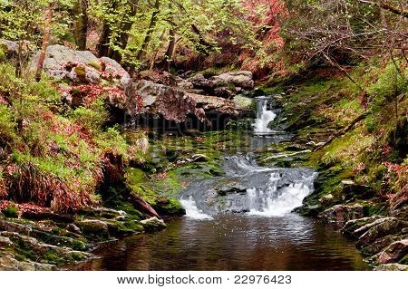 Ardennes falls