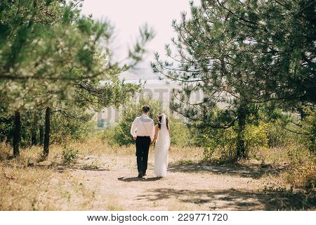 The Groom In A White Shirt And The Bride In A Wedding Dress And Veil Go Hand In Hand Over The Sunny