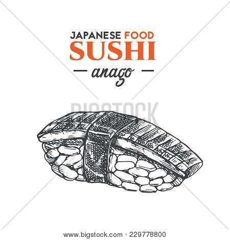 Anago Sushi Sketch. Japanese Traditional Food Icon. Isolated Hand Drawn Vector Illustration.