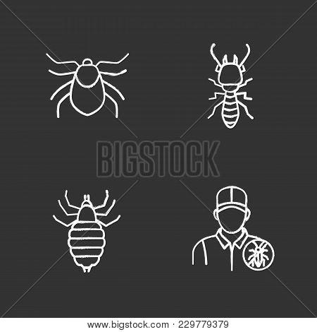 Pest Control Chalk Icons Set. Mite, Termite, Louse, Exterminator. Isolated Vector Chalkboard Illustr
