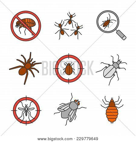 Pest Control Color Icons Set. Stop Fleas, Ants, Cockroach Searching, Spider, Mite Target, Mosquito B