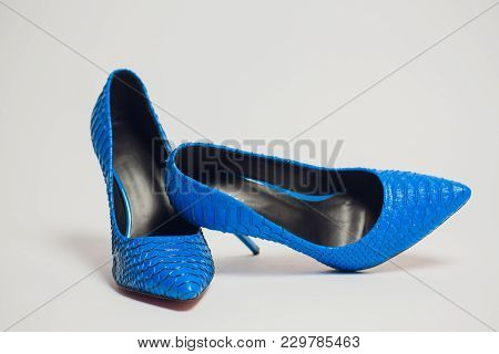 Blue High Heeled Shoe Crocodile Isolated Woman