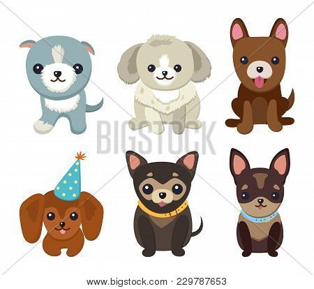 Dogs And Puppies Collection, Poster With Pets, Of Different Breeds, Pug And Basset Hound, Labrador A
