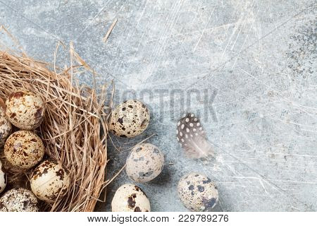 Quails eggs. Easter greeting card. Top view with space for your greetings