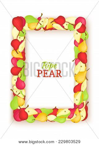 Vertical Rectangle Colored Frame Composed Of Delicious Pear Fruit. Vector Card Illustration. Pears F