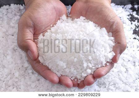 Sea Salt In The Hands Of Men. Sea Salt Is Used For Seasoning, Preserving Food And Making Beauty Trea