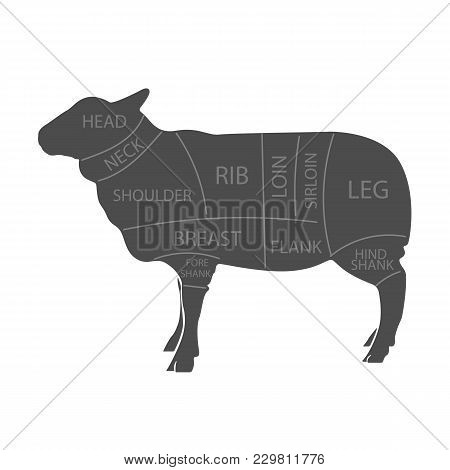 Scheme Of Cutting Of Lamb Meat With The Line Of Cutting. Design For Butcher Shop, Butcher Shop, Bann