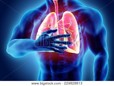 3d Illustration Of Lungs And Chest Painful, Medical Healthcare.