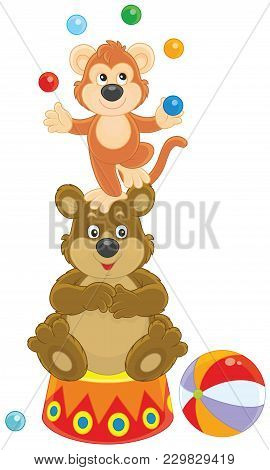 Circus Bear And Monkey Juggling With Color Balls