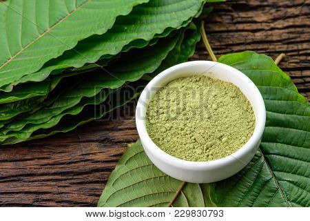 Mitragynina Speciosa Or Kratom Leaves With Powder Product In White Ceramic Bowl And Wooden Table Bac