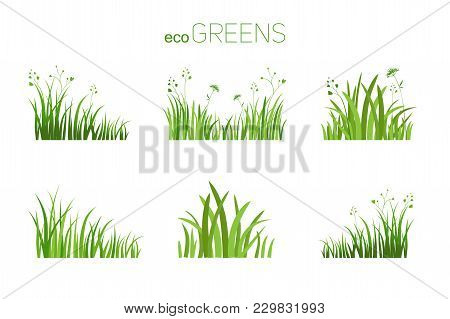 Grass Icon. Silhouette Of Green Plants For Logo Or Sign. Eco Style. Spring Or Summer Seasonal Illust