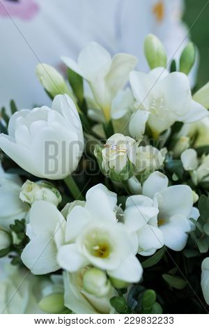 Golden Engagement Ring With Diamond Lies In A Bud Of White Rose. Wedding Ring Lie On A Flower Bud