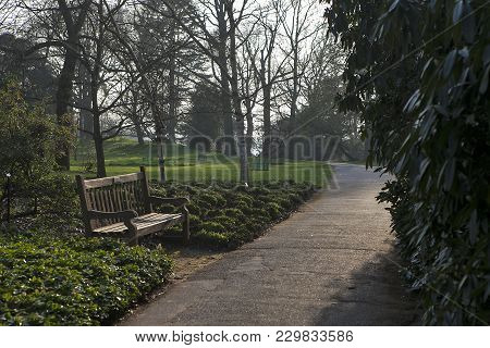 The Wooden Bench And Path In Kew Gardens