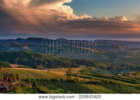View of green vineyards on the hills under beautiful evening sky with clouds in Piedmont, Northern Italy.