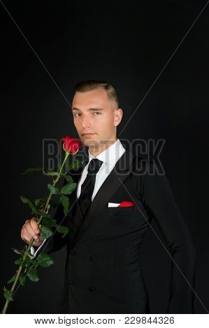 Man With Red Rose On Dark Background. Ballroom Dancer In Suit With Flower. Valentines Day Concept. L