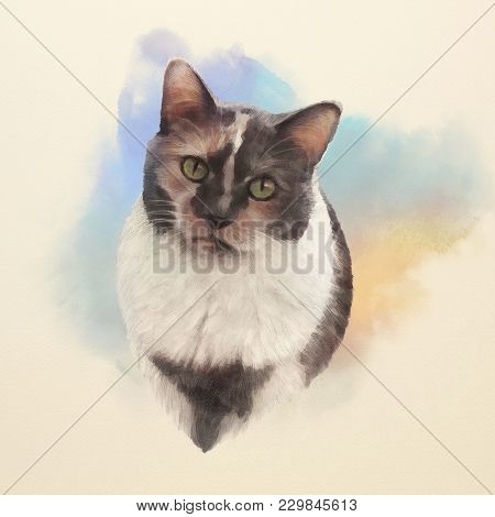Cute Cat. Watercolor Portrait Of A Tricolor Cat. Realistic Drawing Of A Cat With Green Eyes Executed