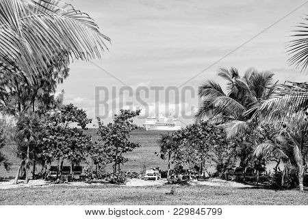 Palm Trees, Green Grass, Lounge Chairs And White Cruise Ship On Beach In Turquoise Sea Or Ocean Wate