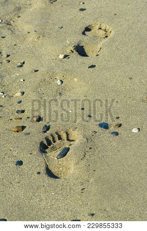 Footprints Of A Single Person In The Sand.