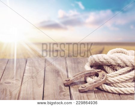 Old Horse Cowboy Horseshoe Lasso Background Nobody